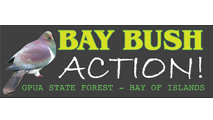 Bay Bush Action