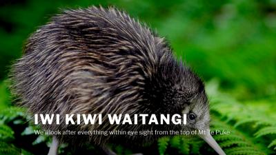 Iwi Kiwi